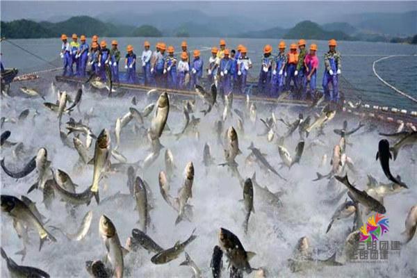 捕鱼达人—团建活动—镇江拓展训练